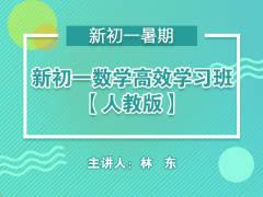新初一数学高效学习班【人教版】(暑期)