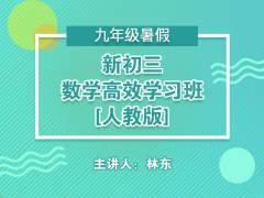 新初三数学高效学习班(人教版 )(暑假)